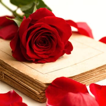 romance writing online